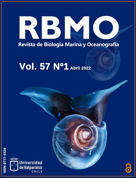 <Oxynoe viridis>, babosa marina. Isla Negros, Filipinas. Andrey Shpatak @andrey_shpatak